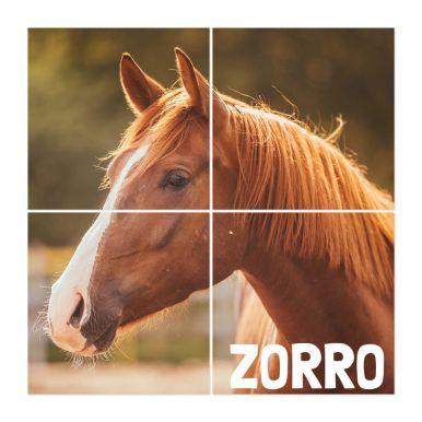 Instacollage fotopanelen bedrukken - 20x20 - Glans (4 tegels)